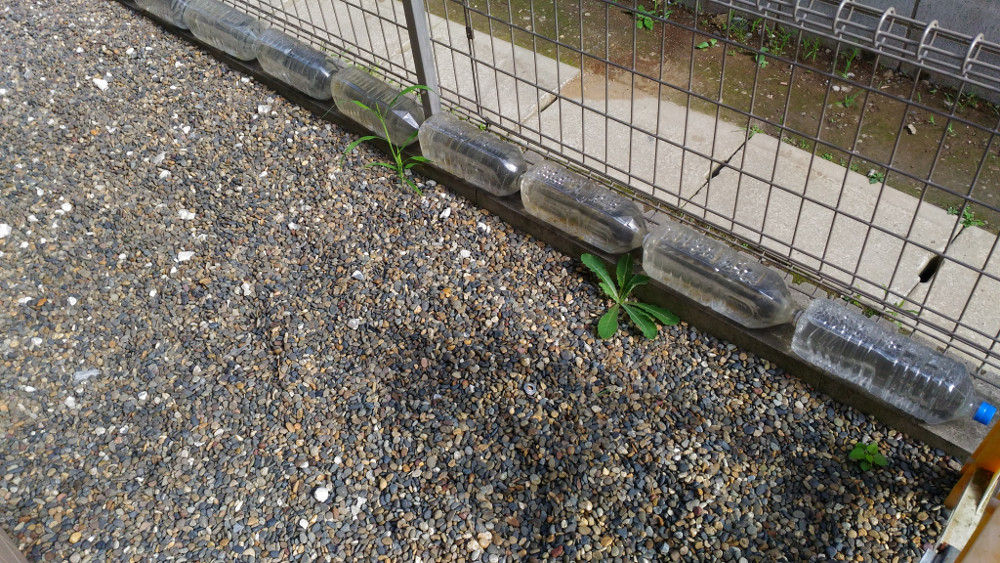 フェンスに猫よけペットボトル