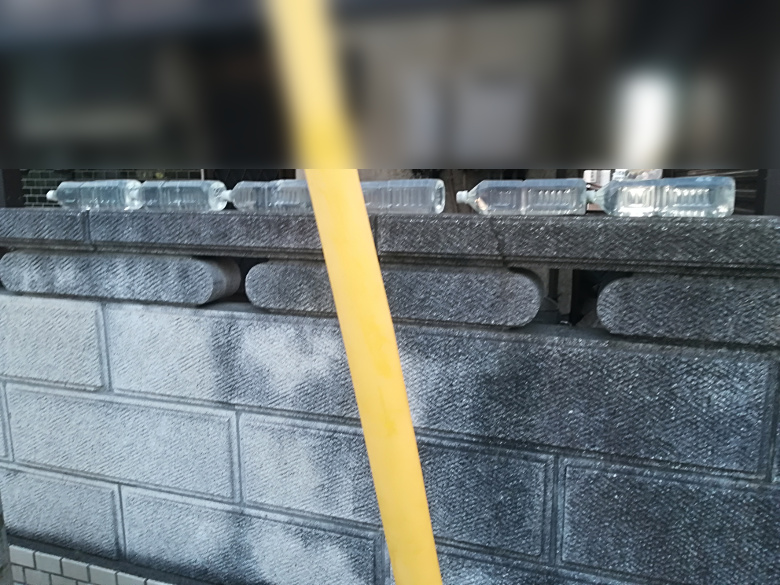 ブロック塀の上にペットボトル