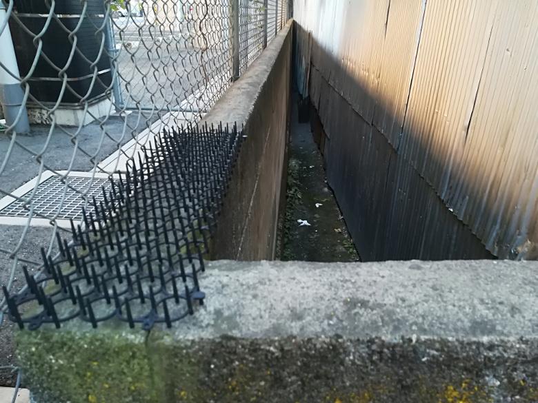 ブロック塀の上に置かれたトゲトゲシート