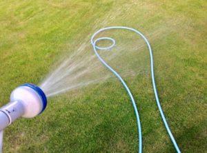 ホースを使って芝生に水撒き