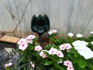 番人くんを花壇に設置