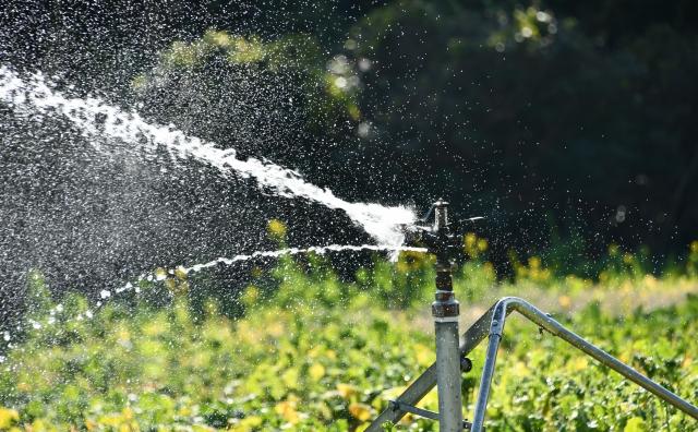 スプリンクラーで庭に水を撒いてる画像
