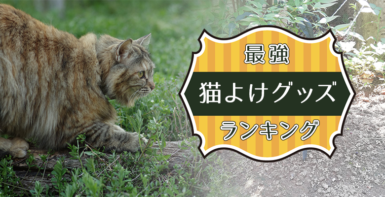 最強猫よけグッズランキング