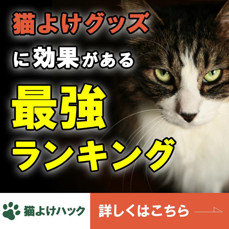 猫よけグッズ最強ランキング