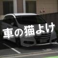 車の猫よけ